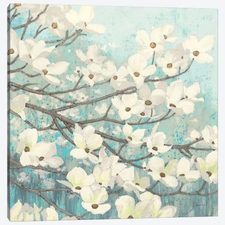 Dogwood Blossoms II Canvas Print #WAC1717} by James Wiens Canvas Wall Art
