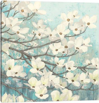 Dogwood Blossoms II Canvas Art Print