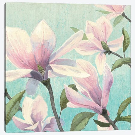 Southern Blossoms I Square Canvas Print #WAC1720} by James Wiens Canvas Wall Art