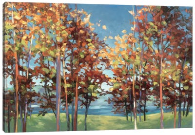 Kaleidoscope Canvas Print #WAC1746