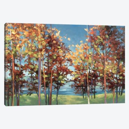 Kaleidoscope Canvas Print #WAC1746} by Julia Purinton Art Print