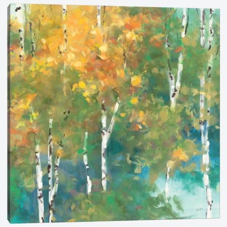 Confetti I Canvas Print #WAC1749} by Julia Purinton Canvas Wall Art