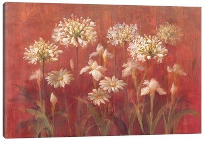 Coastal Hydrangea Canvas Print #WAC174