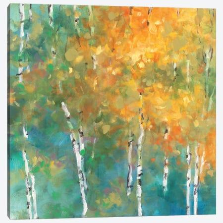 Confetti II Canvas Print #WAC1750} by Julia Purinton Art Print