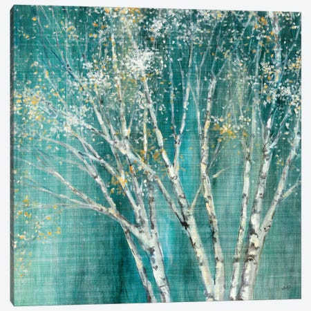Blue Birch Canvas Print #WAC1751} by Julia Purinton Canvas Print
