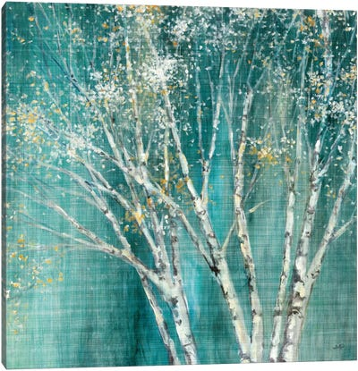 Blue Birch Canvas Art Print