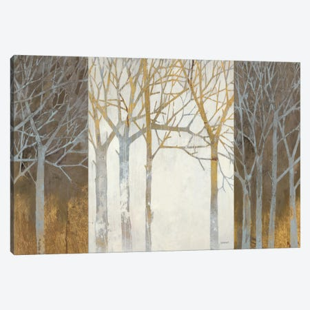 Night and Day Canvas Print #WAC1759} by Kathrine Lovell Canvas Print