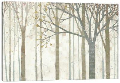 In Springtime no Border Canvas Print #WAC1761