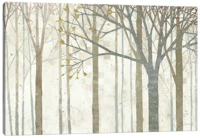 In Springtime no Border Canvas Art Print