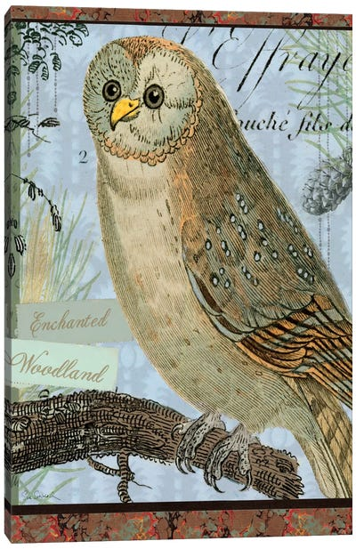 Enchanted Woodland Canvas Print #WAC1812