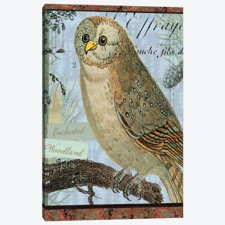 Enchanted Woodland Canvas Print #WAC1812} by Sue Schlabach Canvas Wall Art