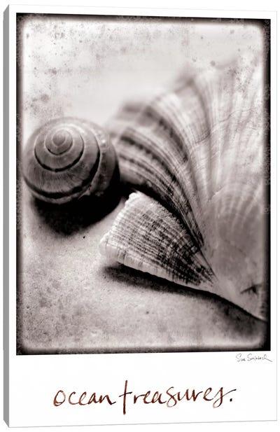 Ocean Treasures Canvas Print #WAC1820