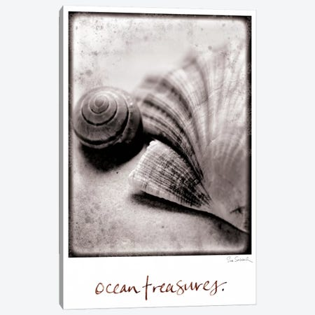 Ocean Treasures Canvas Print #WAC1820} by Sue Schlabach Art Print