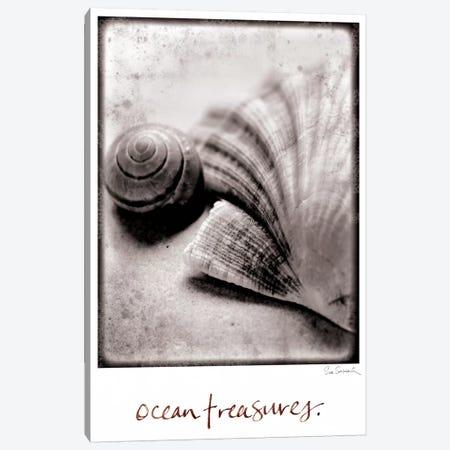 Ocean Treasures Canvas Print #WAC1820} by Sue Schlabach Art Print