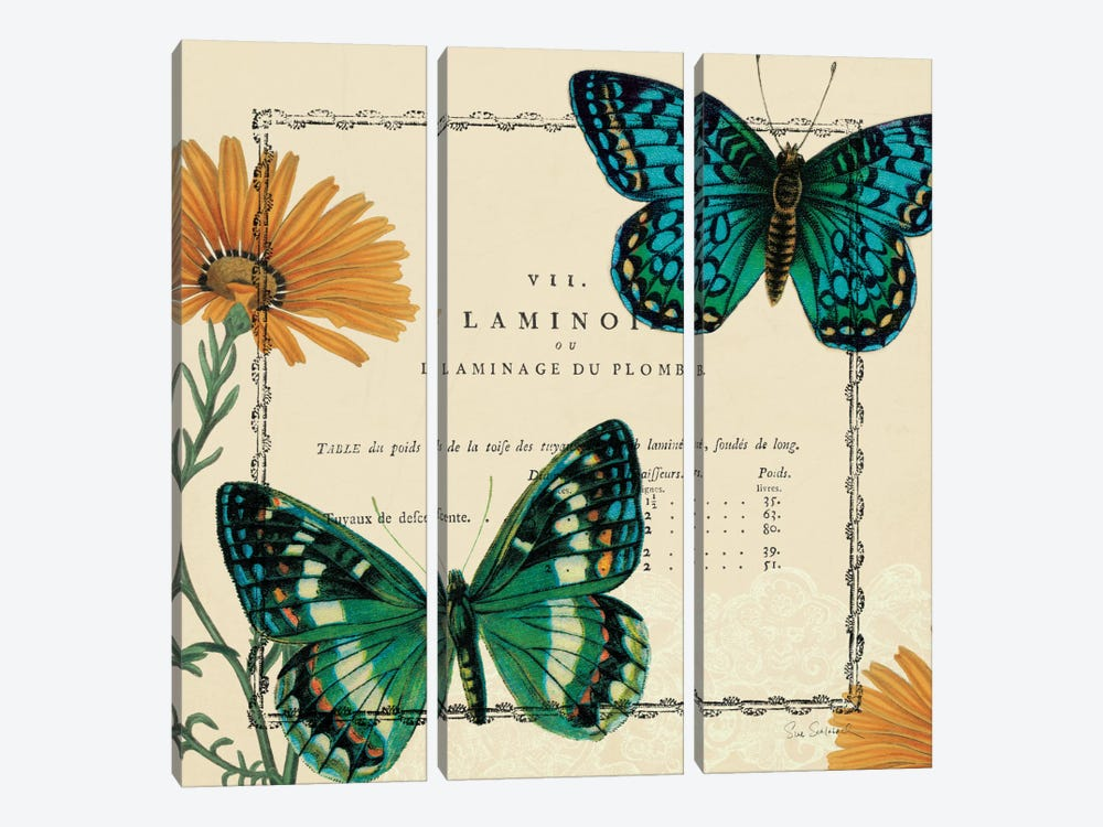 Summer Pages III by Sue Schlabach 3-piece Canvas Wall Art