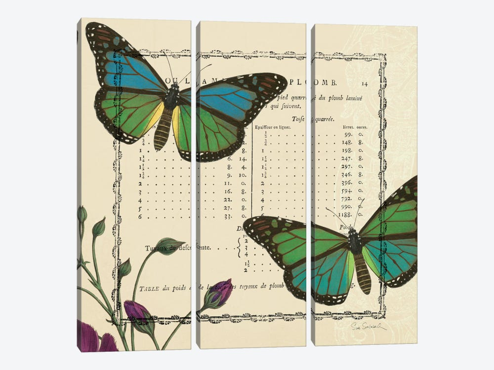 Summer Pages IV by Sue Schlabach 3-piece Canvas Print
