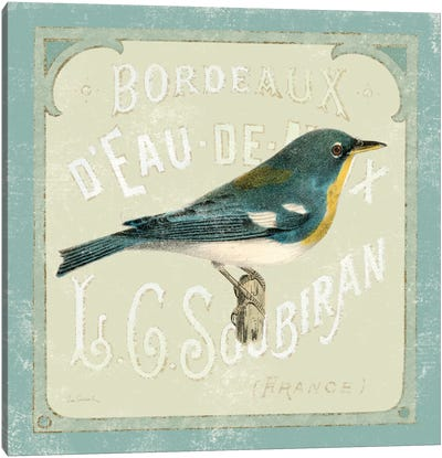 Parisian Bird I Canvas Art Print