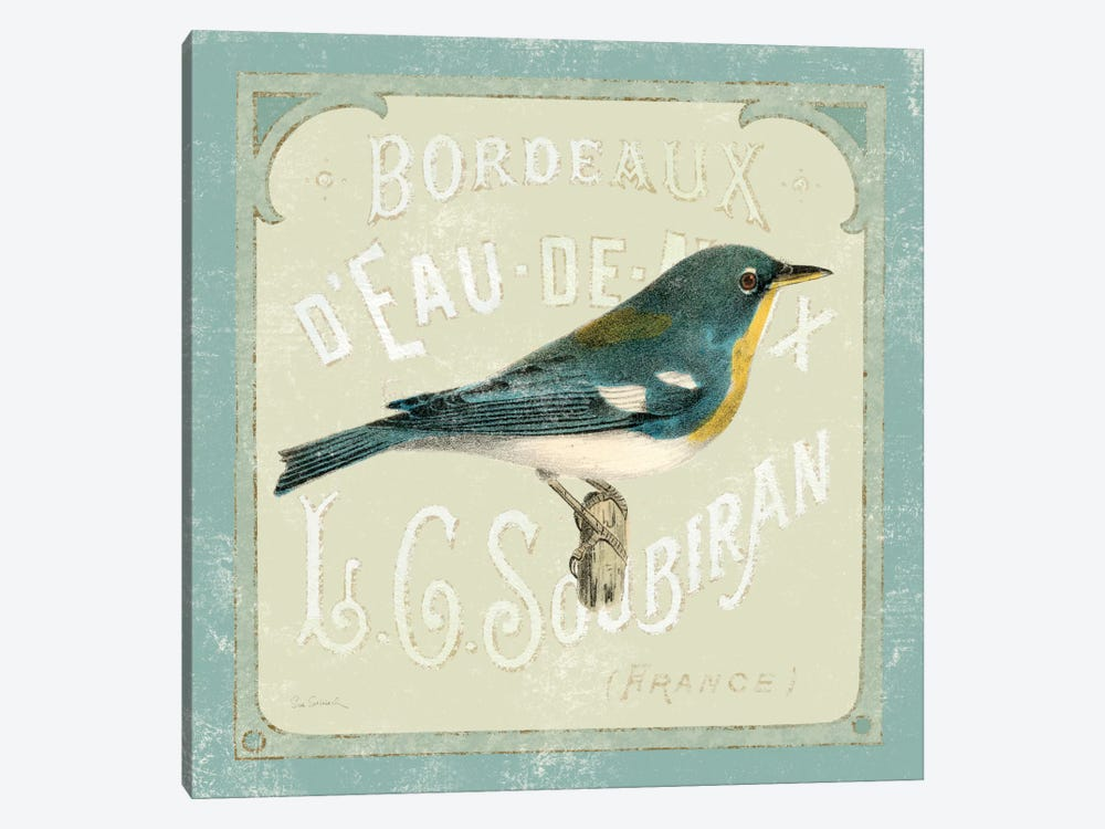 Parisian Bird I by Sue Schlabach 1-piece Canvas Art Print