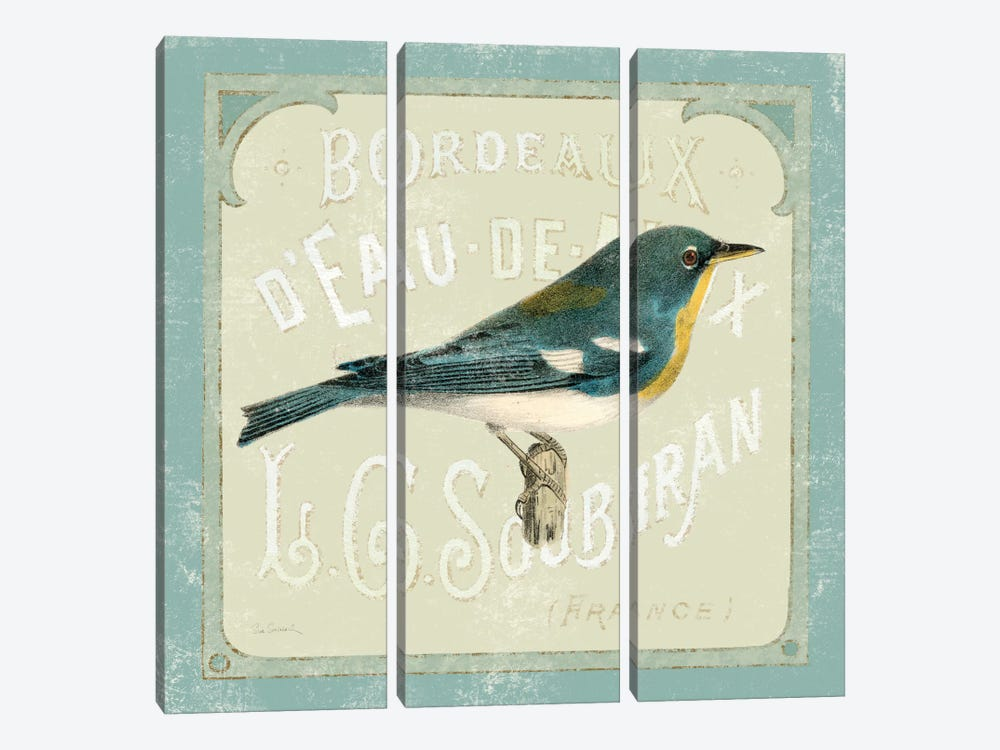 Parisian Bird I by Sue Schlabach 3-piece Art Print