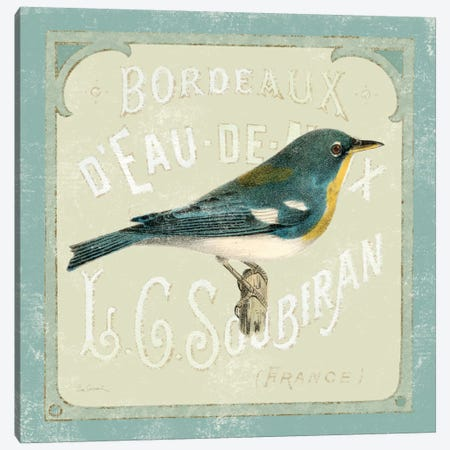 Parisian Bird I  Canvas Print #WAC1833} by Sue Schlabach Canvas Artwork