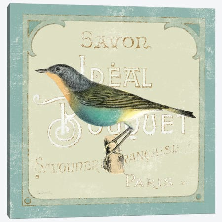 Parisian Bird II  Canvas Print #WAC1834} by Sue Schlabach Art Print