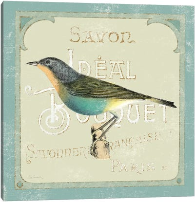 Parisian Bird II Canvas Art Print
