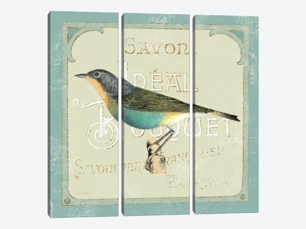 Parisian Bird II 3-piece Canvas Artwork