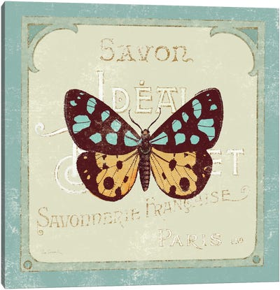 Parisian Butterfly I Canvas Art Print
