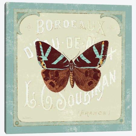 Parisian Butterfly II  Canvas Print #WAC1836} by Sue Schlabach Art Print