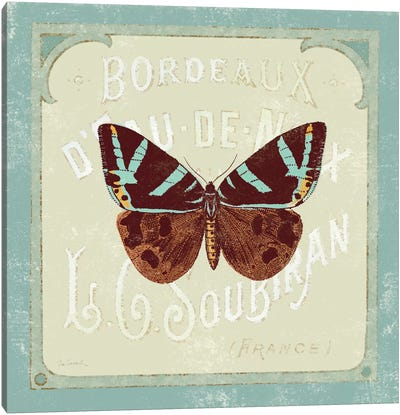 Parisian Butterfly II Canvas Art Print