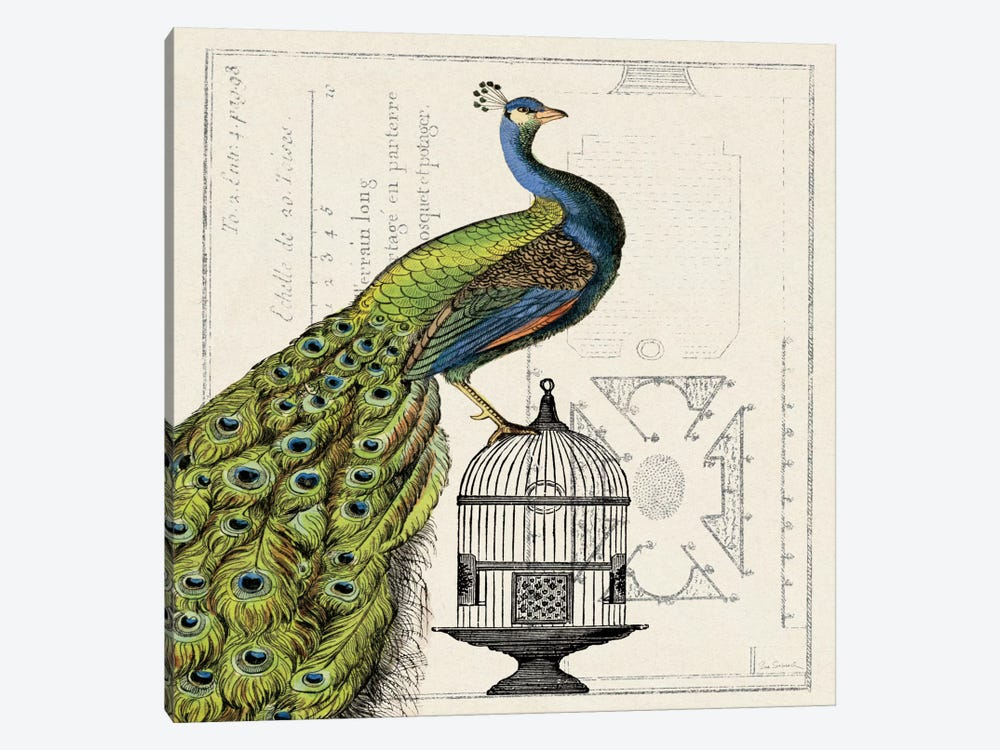 Peacock Birdcage I  1-piece Canvas Art