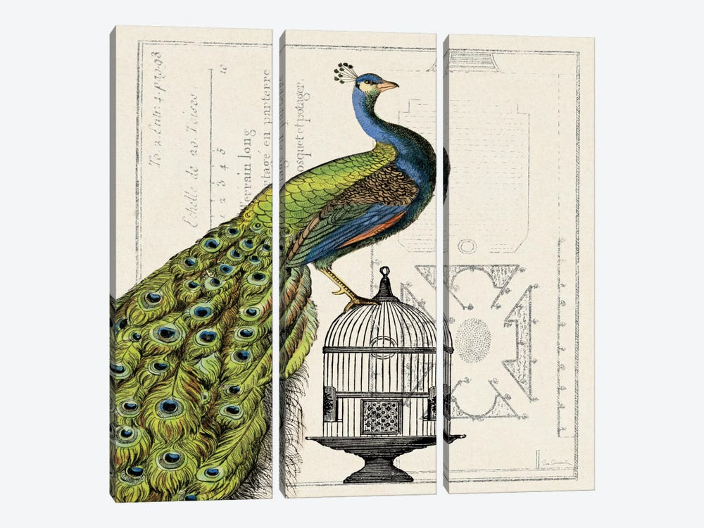 Peacock Birdcage I by Sue Schlabach 3-piece Canvas Art