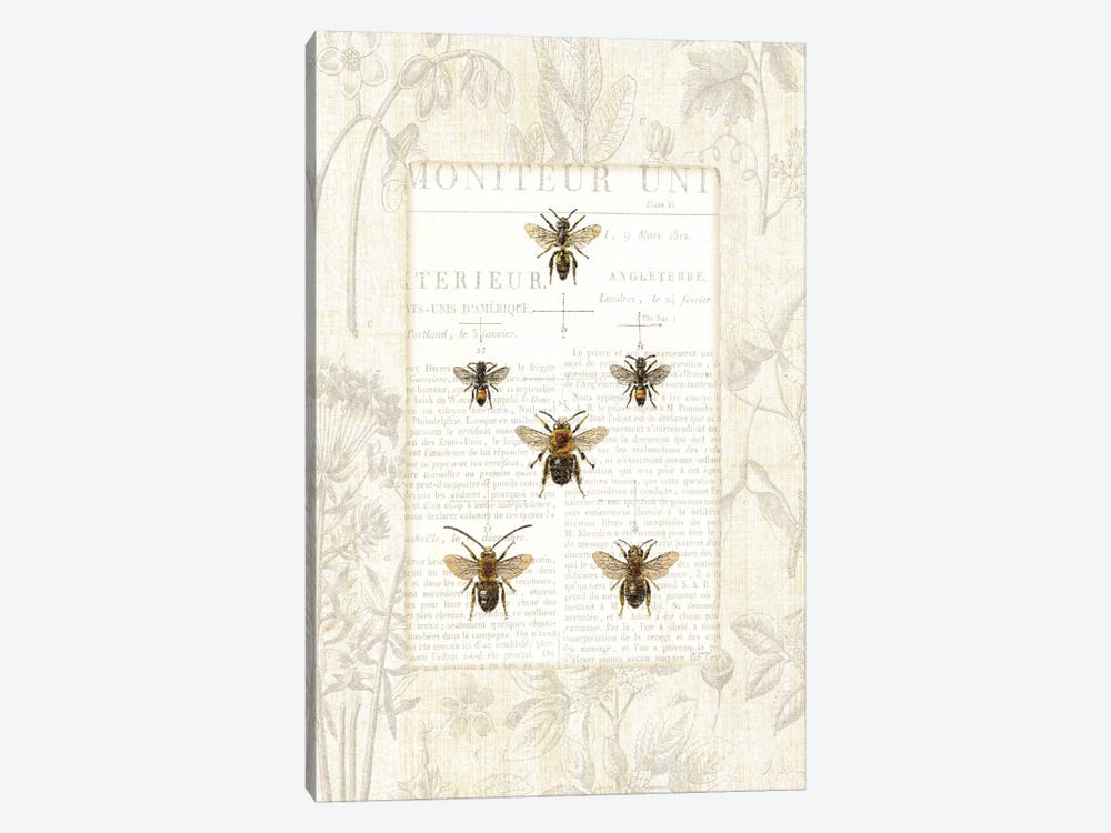 Bee Botanical  by Sue Schlabach 1-piece Canvas Art Print
