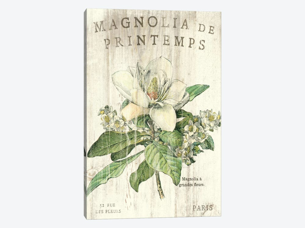 Magnolia de Printemps 1-piece Canvas Print
