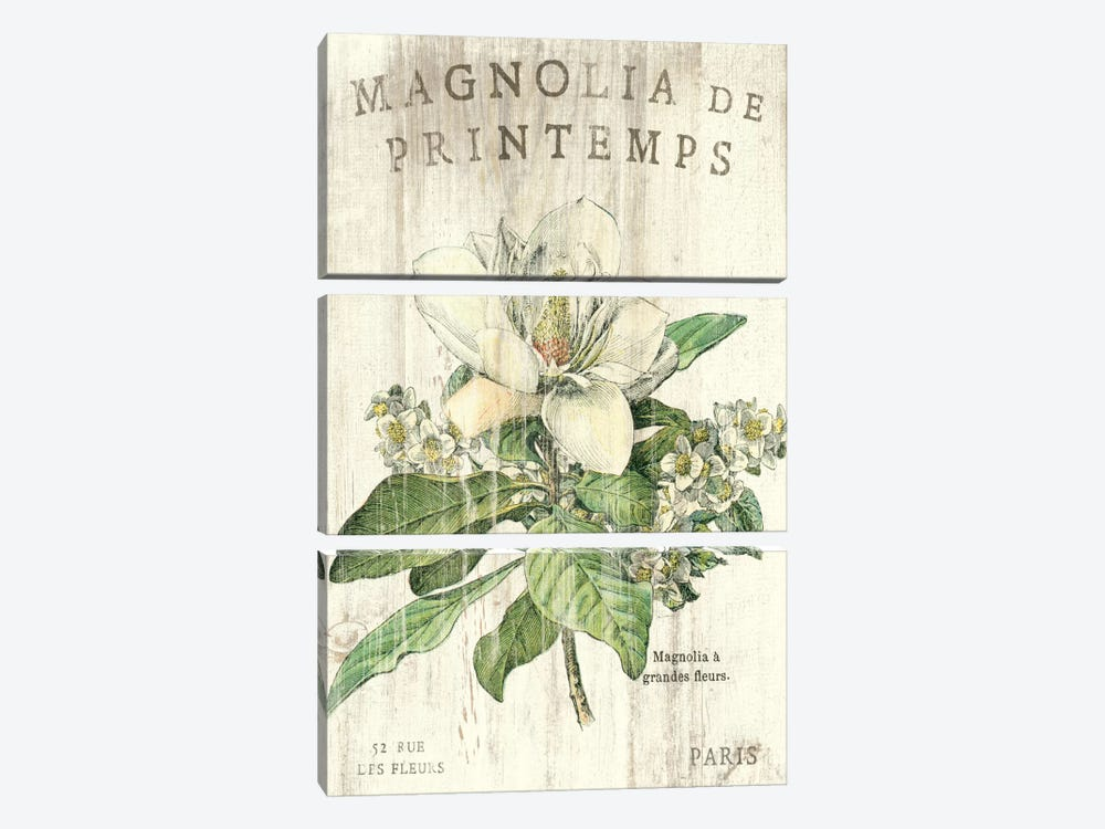 Magnolia de Printemps 3-piece Canvas Print
