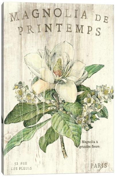 Magnolia de Printemps  Canvas Art Print