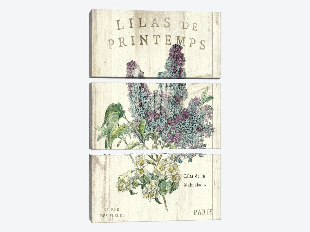 Lilas de Printemps  by Sue Schlabach 3-piece Canvas Art