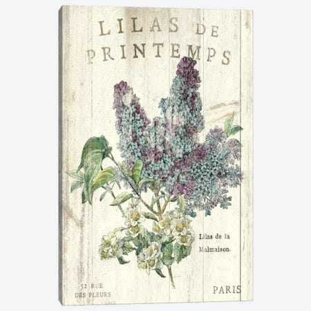 Lilas de Printemps  Canvas Print #WAC1867} by Sue Schlabach Canvas Wall Art