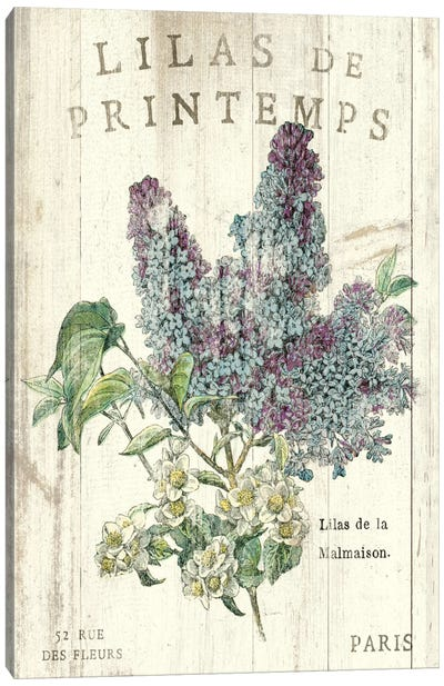 Lilas de Printemps  Canvas Art Print