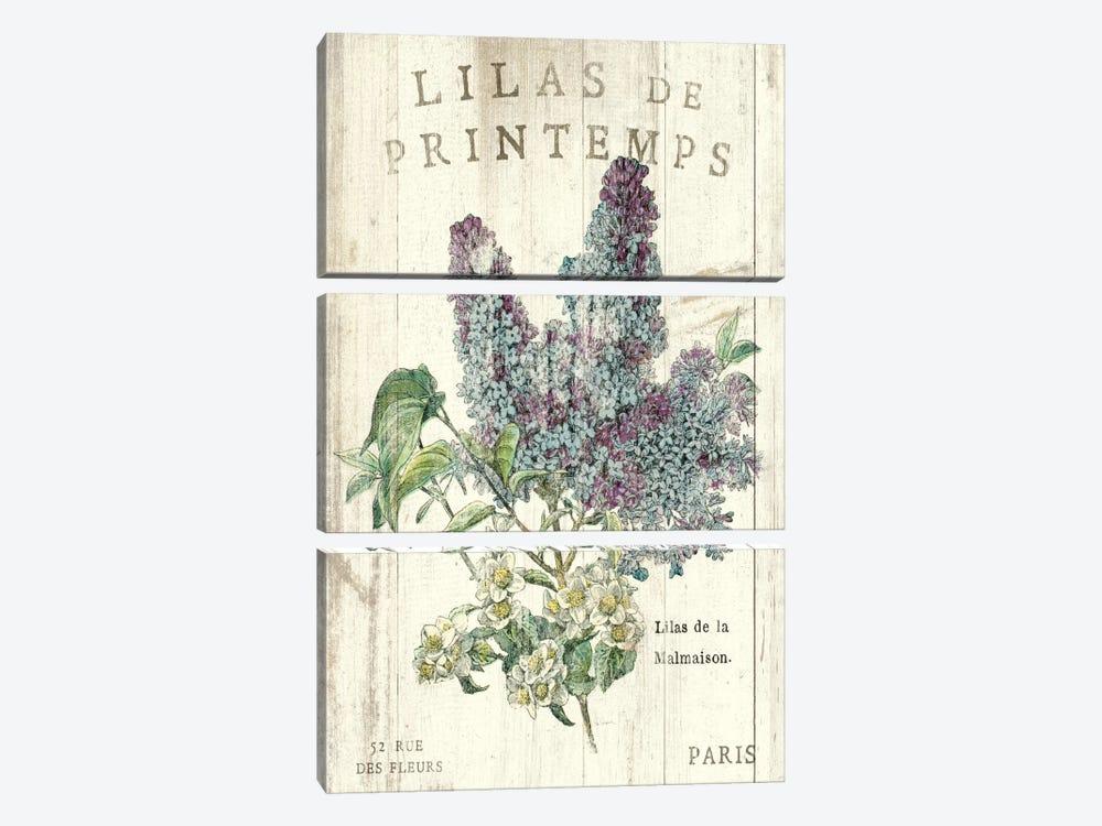 Lilas de Printemps Canvas Wall Art by Sue Schlabach   iCanvas