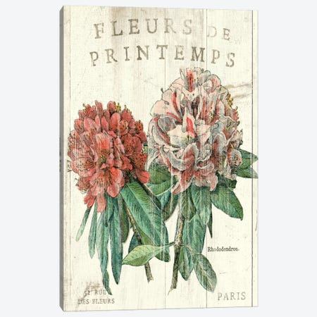Fleur de Printemps  Canvas Print #WAC1868} by Sue Schlabach Canvas Print