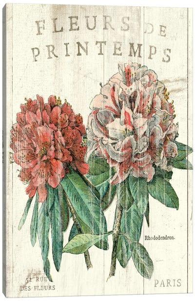 Fleur de Printemps  Canvas Print #WAC1868