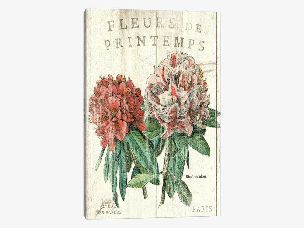 Fleur de Printemps  by Sue Schlabach 1-piece Art Print