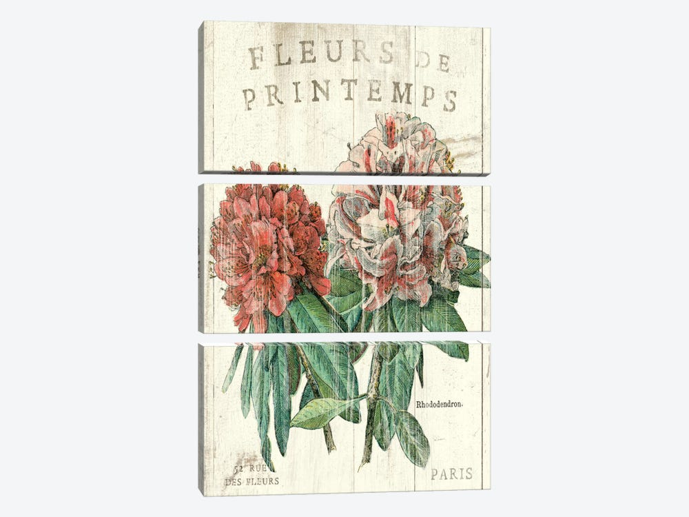 Fleur de Printemps  by Sue Schlabach 3-piece Canvas Art Print