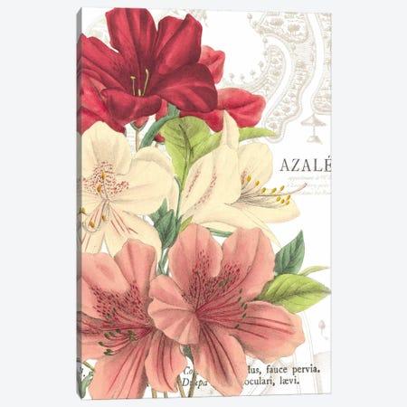 Azalee Jardin II Canvas Print #WAC1876} by Wild Apple Portfolio Canvas Print
