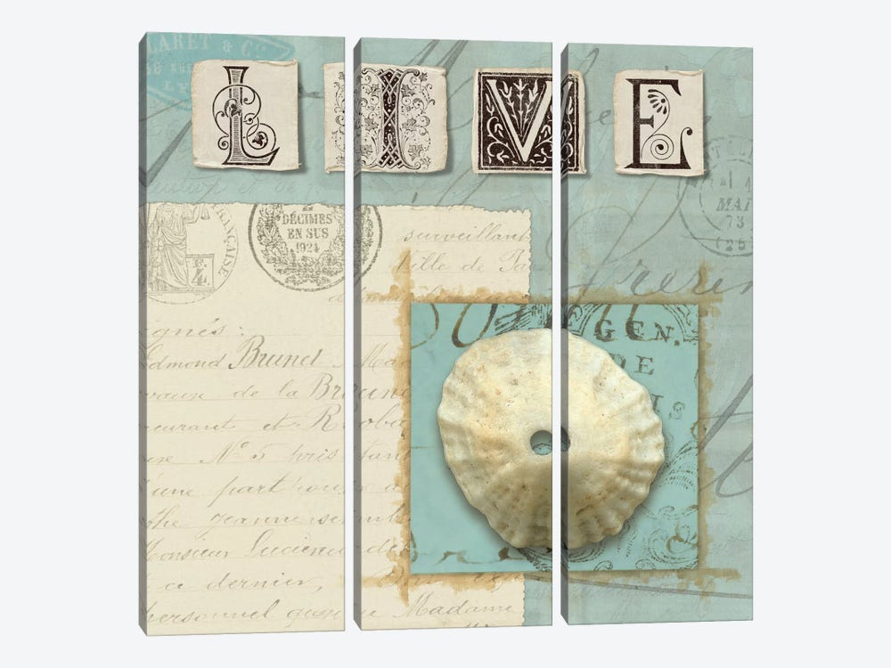 Beach Journal III by Wild Apple Portfolio 3-piece Canvas Wall Art
