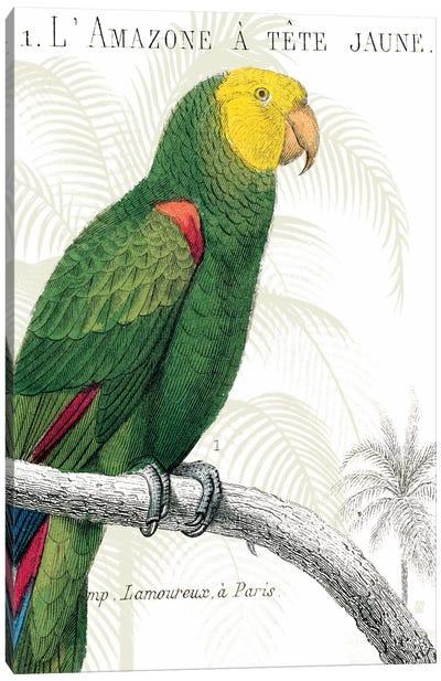 Parrot Botanique I Canvas Print #WAC1892