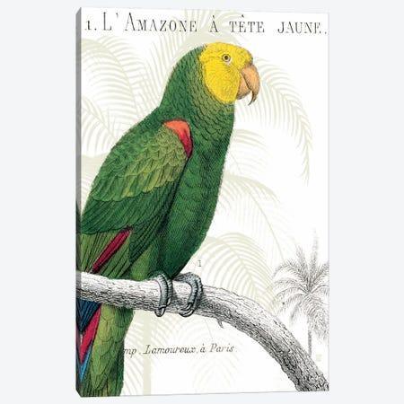 Parrot Botanique I Canvas Print #WAC1892} by Wild Apple Portfolio Canvas Art