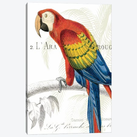 Parrot Botanique II Canvas Print #WAC1893} by Wild Apple Portfolio Canvas Artwork