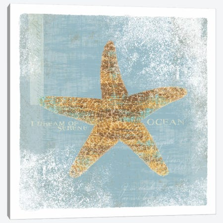 Serene Ocean Canvas Print #WAC1894} by Wild Apple Portfolio Canvas Print